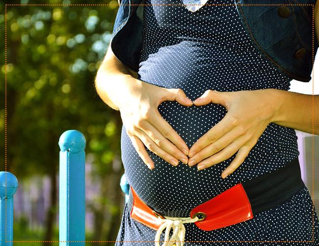 24 неделя беременности рекомендации
