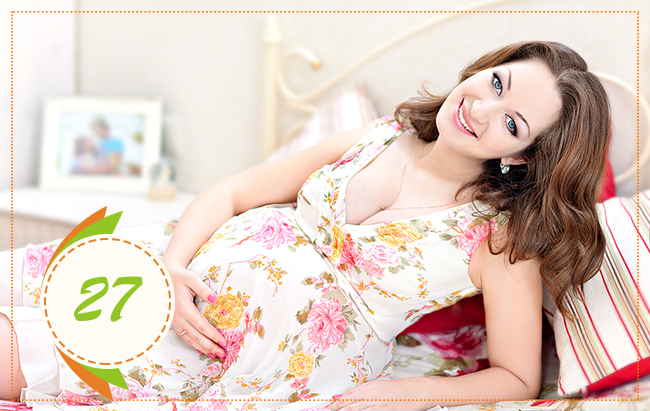 двадцать седьмая неделя беременности