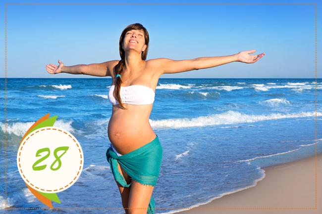 двадцать восьмая неделя беременности