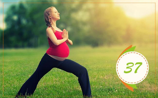 тридцать седьмая неделя беременности