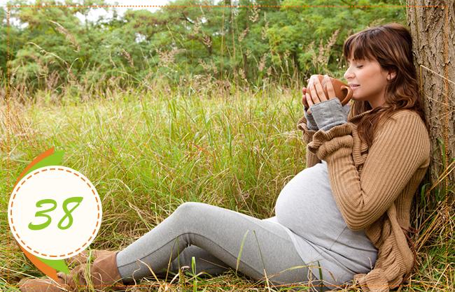 тридцать восьмая неделя беременности