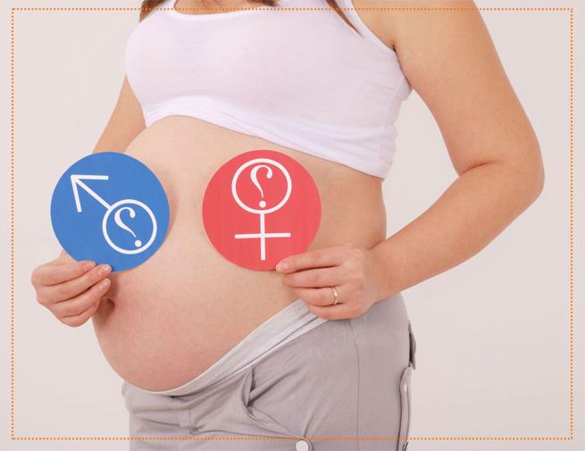 изменения на 31 недели беременности