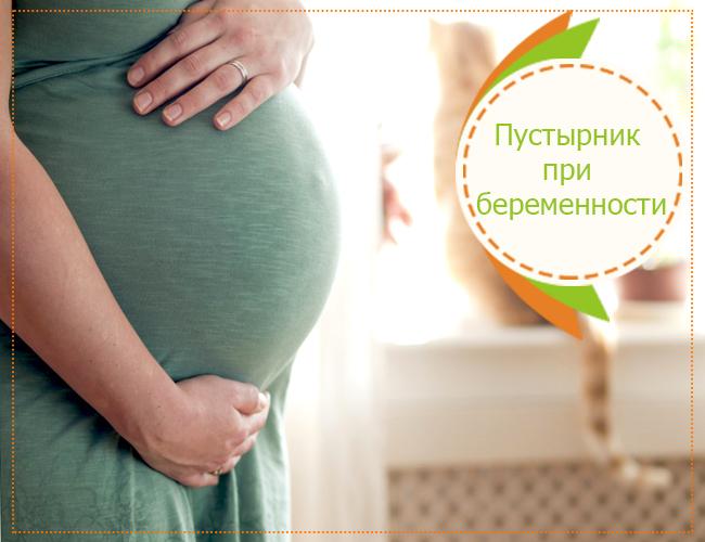 пустырник при беременности