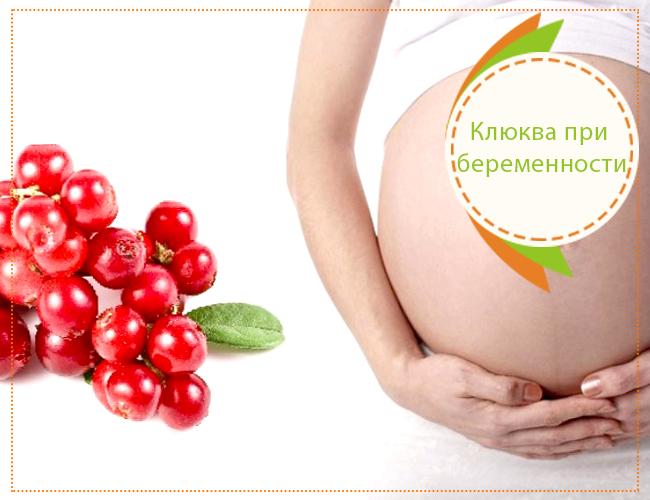 при беременности клюква