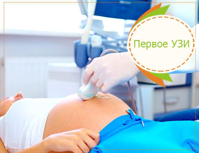 1 узи1 узи при беременности на каком сроке при при беременности на каком сроке