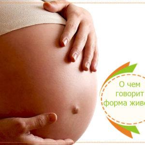 форма живота при беременности
