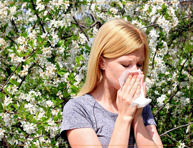 Сезонная аллергия у беременных как помочь 258